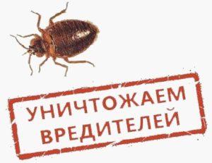 МосОблДез-уничтожаем вредителей
