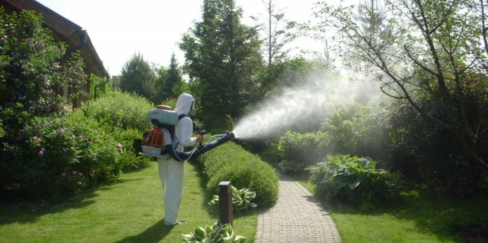 фото дезинфектора, за работой (борьбас насекомыми)