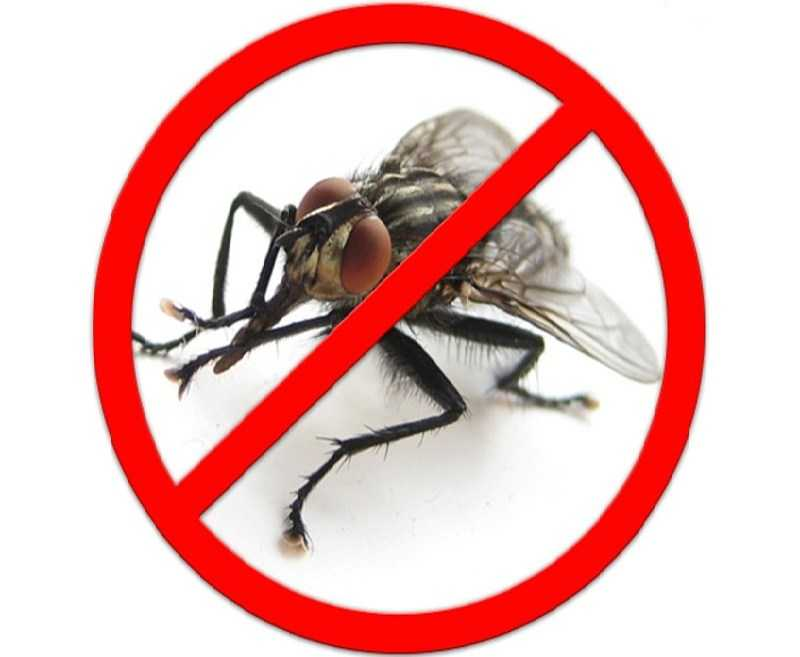 Против мух
