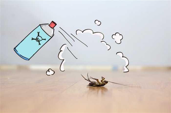 Обработанный таракан